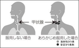https://www.city.kashiwazaki.lg.jp/atom/genshiryoku/sonae/youso/1508051613.html
