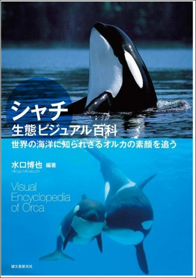 http://ecx.images-amazon.com/images/I/7189q8472HL.jpg