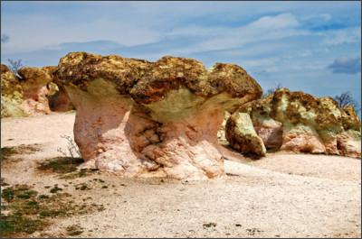 http://www.landolia.com/photo/2014/photo-mantarkaya-stone-mushrooms-beli-plast-43259-xl.jpg
