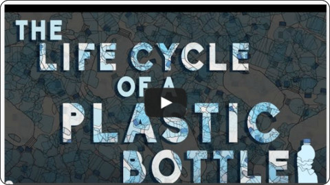 http://ed.ted.com/lessons/what-really-happens-to-the-plastic-you-throw-away-emma-bryce