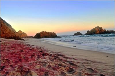 http://4.bp.blogspot.com/-RglN70IEXEE/T_T-j9qrxkI/AAAAAAAAAQI/Ox_SUVhczOc/s1600/Purple+Sand+Beach.jpg