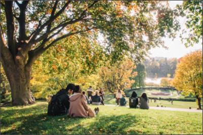 https://upload.wikimedia.org/wikipedia/commons/4/48/High_Park_Toronto_October_2012.jpg