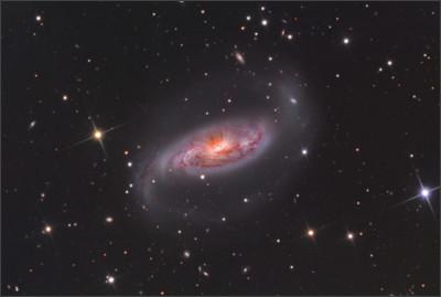 http://www.starshadows.com/_img/image/gallery/2/NGC%201808_Master.jpg
