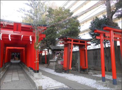 http://livedoor.blogimg.jp/nyabe0427-hsb/imgs/7/e/7ec511cf.jpg