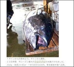 http://blog.goo.ne.jp/tukityan1/e/fdbeb13fdff912a83dbc55b3aee71899