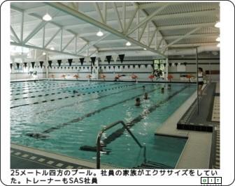 http://www.atmarkit.co.jp/news/200811/04/sas.html